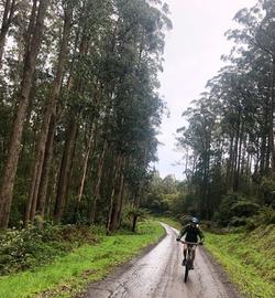 Mountain Bike Re-Treat Great Ocean