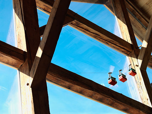 Meleze timber window framing.jpg