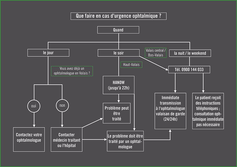 Flow-Chart_Notfall_FR1.jpg