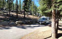 Parked among the pines
