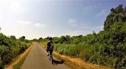 The bike trail to Madaket
