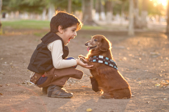 Benefits Of Having A Pet | By The Best Childcare In Macquarie Park