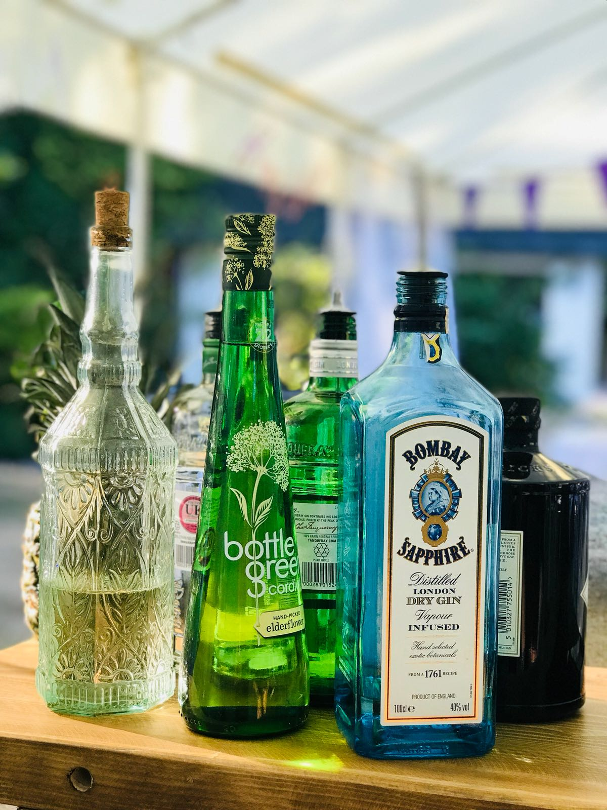 Gins for Gin and Tonics