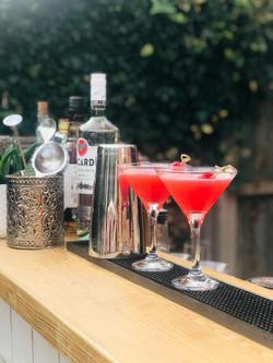 Rum Cocktail Raspberry Daiquiri