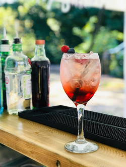Fruity Gin and Tonic