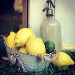 Lemons and Vintage Soda Bottle