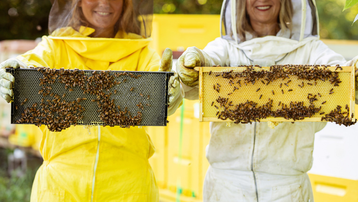Honey-0062.jpg