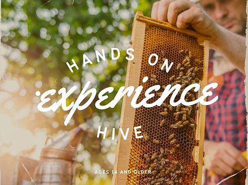 Hands on Hive Experience July 10th from 9:00-10:30
