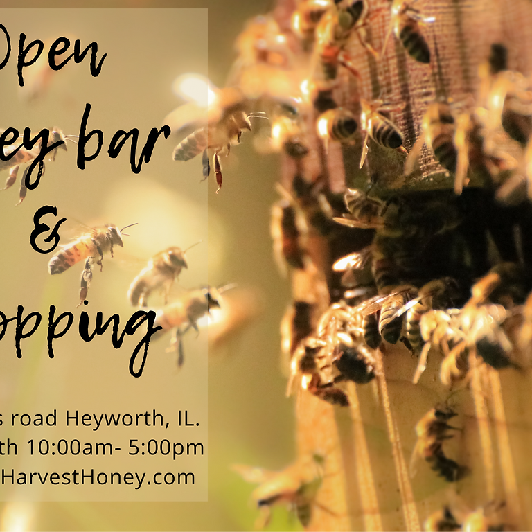 August 14th Honey Tasting and Shopping