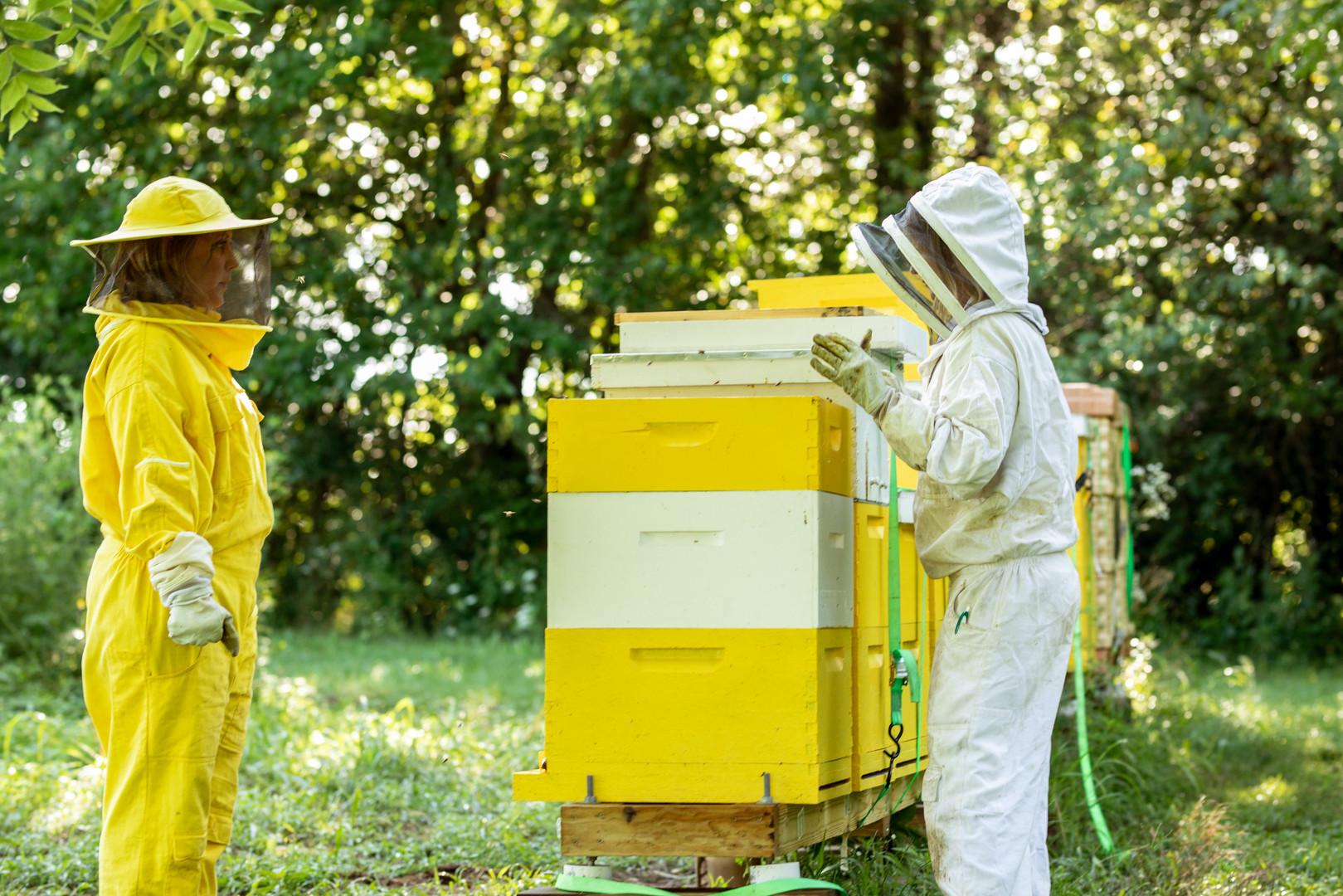 Honey-0056.jpg