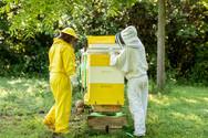 Honey-0057.jpg