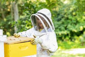 Honey-0064.jpg