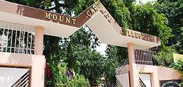 mount carmel college management quota ad