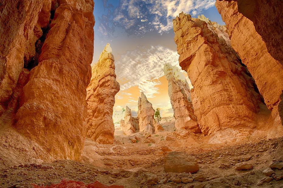 Desert 3.jpg