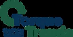 ev (electric vehicle) gearbox, ev transmission, electric vehicle (ev) conversion, electric truck gearbox,  electric truck transmission, ev conversion consulting, complete electric power trains, torque trends, surprise az