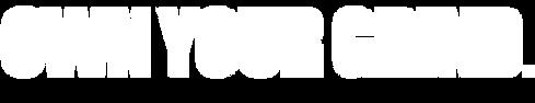 Logo - V3 - Transparent - White.png
