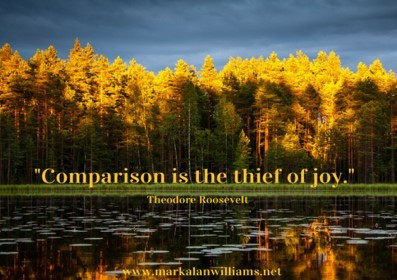 Comparison Is The Thief of Joy -Theodore Roosevelt