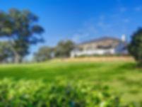 moss ridge.jpg