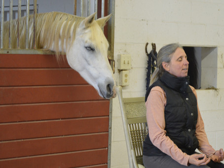 More than Just Poses: Improving Horsemanship with Yoga Part 2