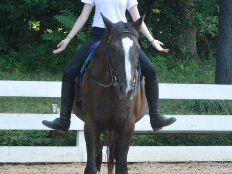 Nothing Really Matters: Improving Horsemanship with Yoga