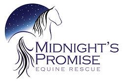 Midnight's Promise.jpg
