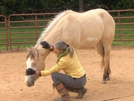 Yoga and Horses: The Power of Feeling Good
