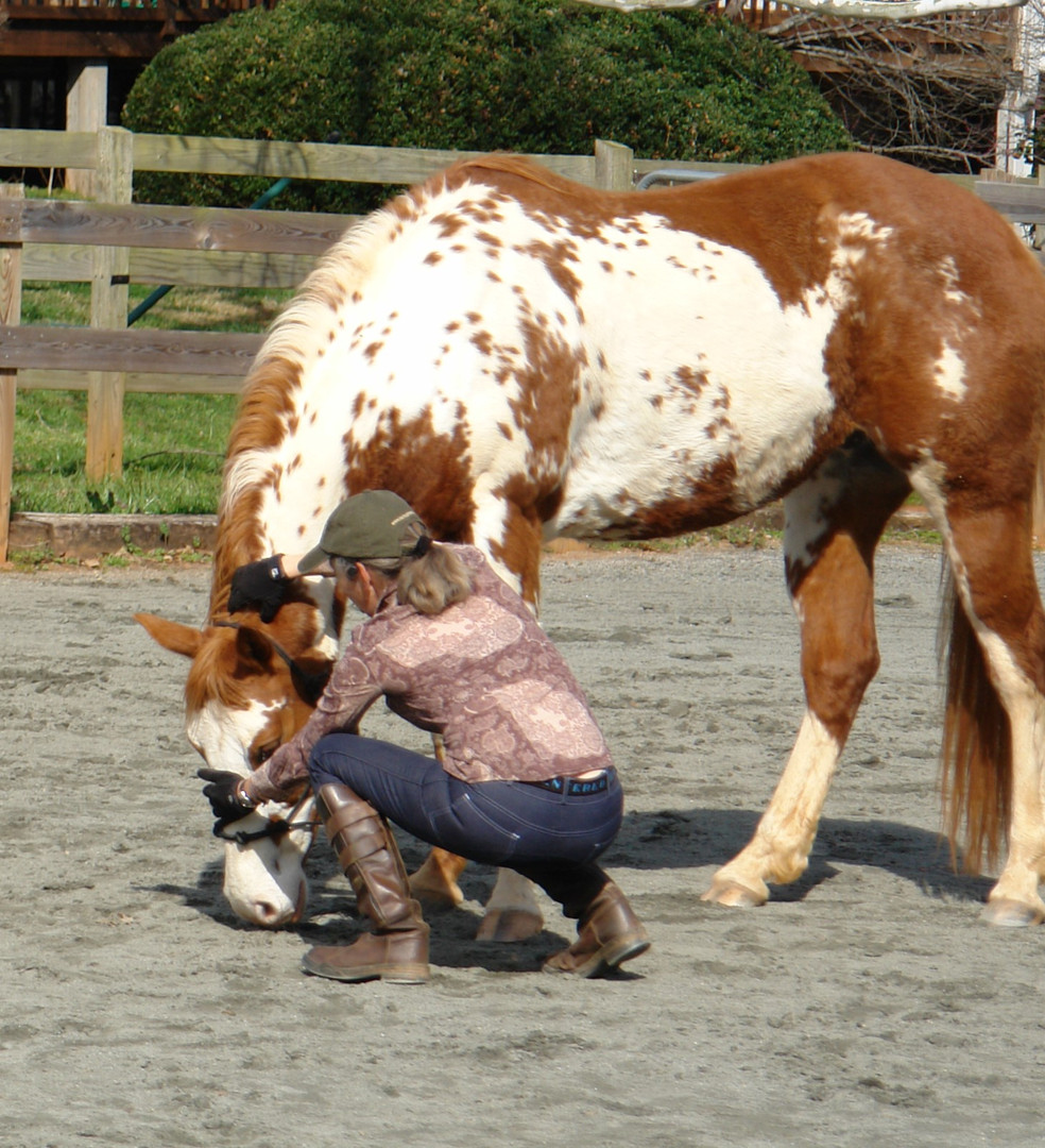 Yin Horsemanship