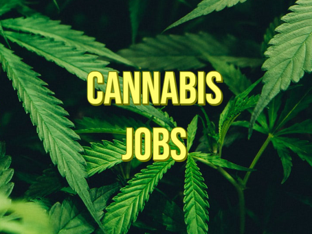 Cannabis Jobs!