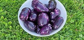 Violetie kartupeļi Violet Queen
