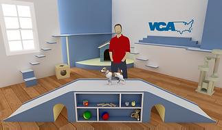 VAC Sets