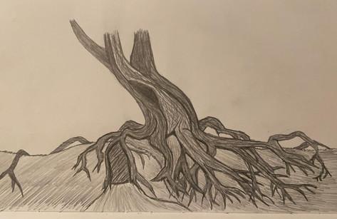 Concept Art Tree.jpeg