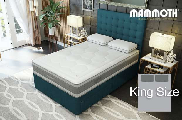Mammoth Shine Essential Plus Softer King Size Divan Bed