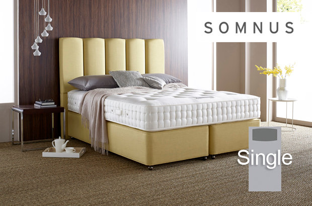 Somnus Diplomat 6550 Single Divan Bed