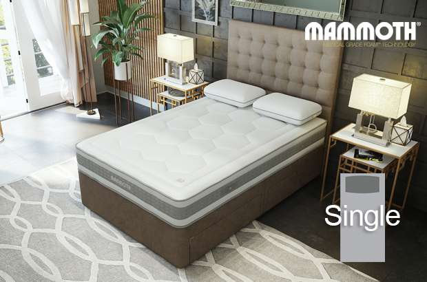 Mammoth Shine Essential Medium Pocket Single Divan Bed