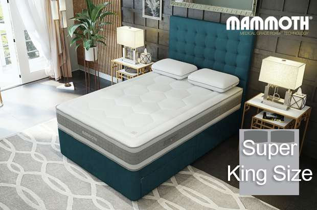 Mammoth Shine Essential Plus Softer Super King Size Divan Bed