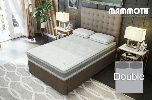 Mammoth Shine Essential Firmer Double Divan Bed