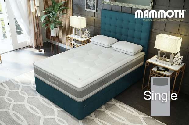 Mammoth Shine Essential Plus Softer Single Divan Bed