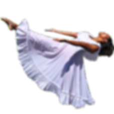 Do not copy, duplicate, reproduce, edit or otherwise remove and use any photography from this website without the express written permission of AAP Dance, LLC.