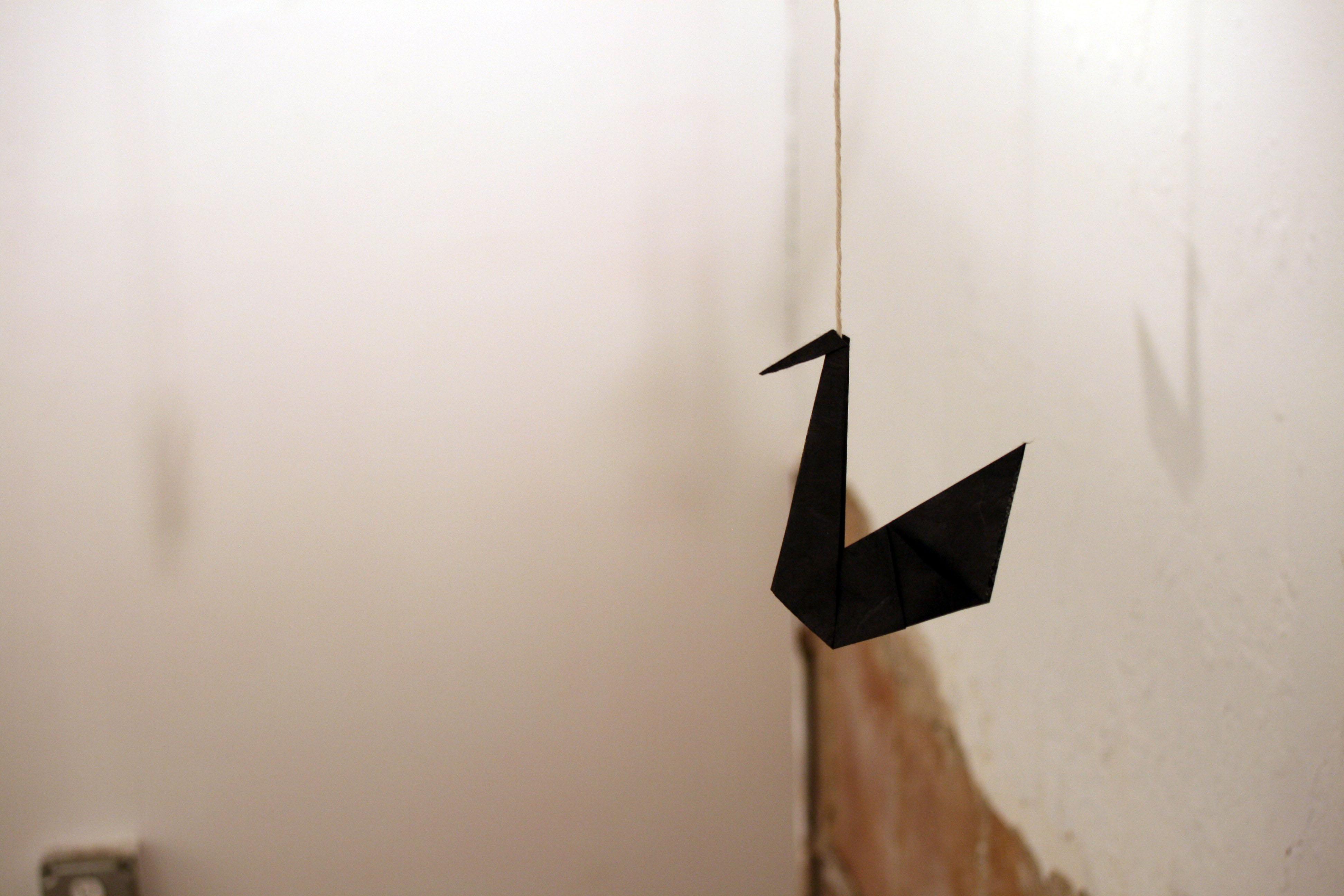 hanging swans 4
