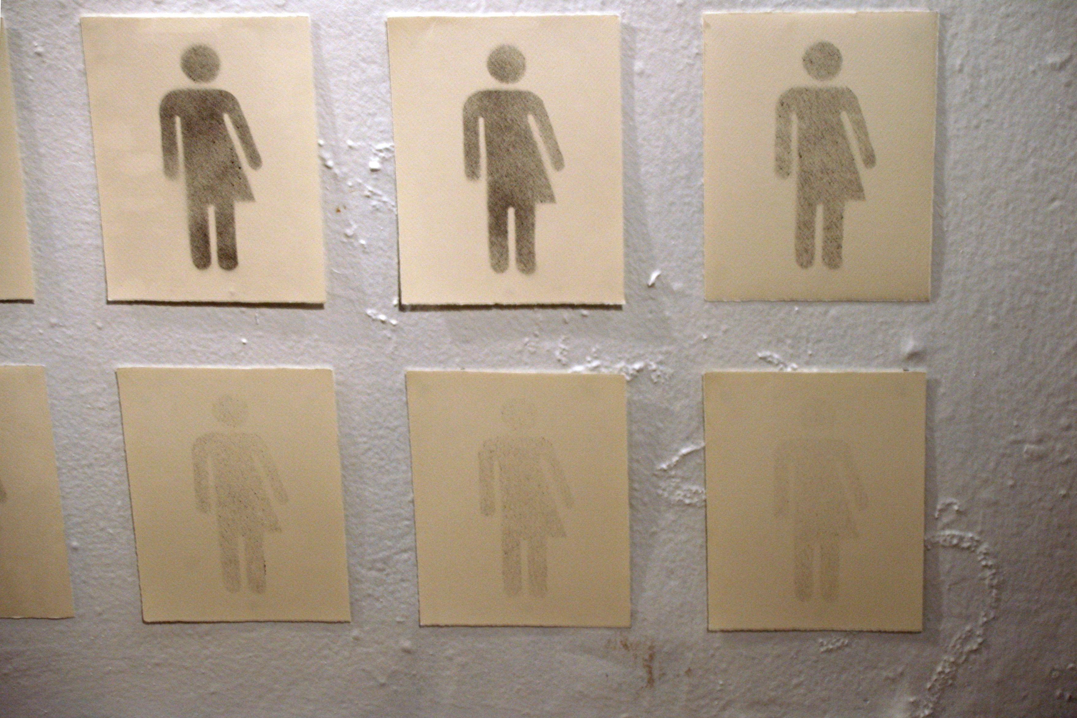 Gender Spectrum 4