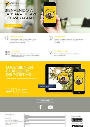 diseño web guyra paraguay