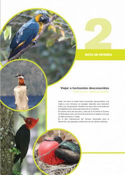 REVISTA_URUTAÚ_N°6_DICIEMBRE_2017-08