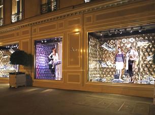 2-luxsense-decor-de-vitrine-dior-coussin