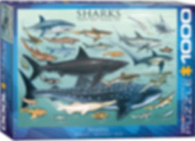 SHARKS puzzle 1000 pc.jpg