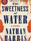 THE SWEETNESS OF WATER by Nathan Harris  $28.00 hardcover 9780316362481