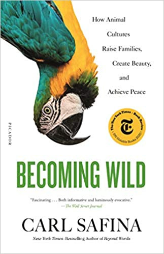 BECOMING WILD by Carl Safina  $19.00 paperback 9781250787613