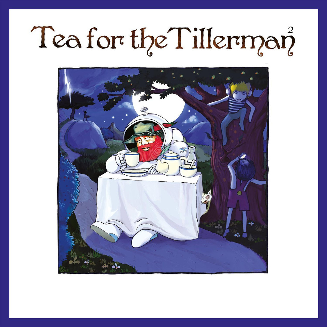 TEA FOR THE TILLERMAN II Cat Stevens