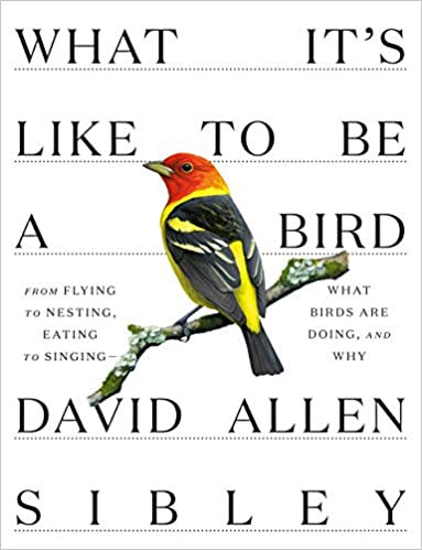 WHAT IT'S LIKE TO BE A BIRD by David Allen Sibley  $35.00 hardcover 9780307957894