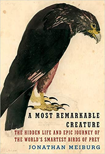 A MOST REMARKABLE CREATURE by Jonathan Meiburg  $30.00 hardcover 9781101875704