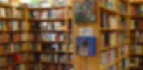 Levin & Company independent bookstore in Healdsburg new fiction books